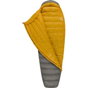 Sea to Summit Spark SpIV Sacco a pelo lungo, grigio/giallo